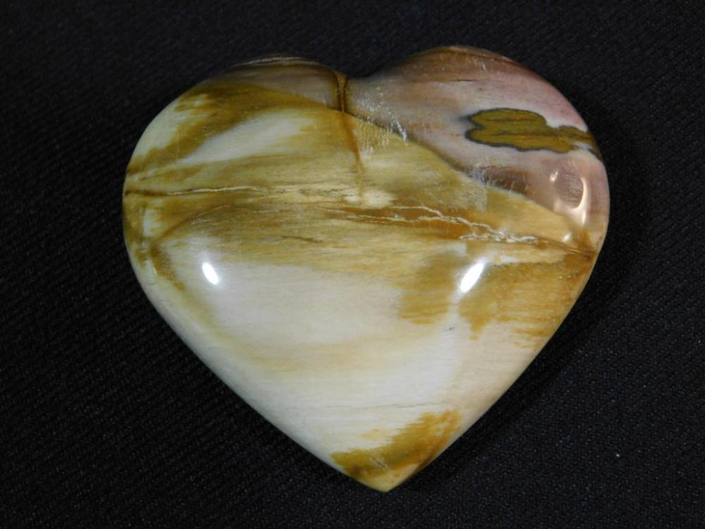 PETRIFIED WOOD HEART ROCK STONE LAPIDARY SPECIMEN