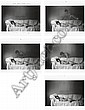 The Young Girl's Dream, 1969, Duane Michals, Click for value