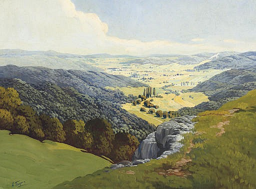 A valley in summertime
