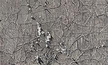 LU HUI (B. 1977) - Vine 19-2