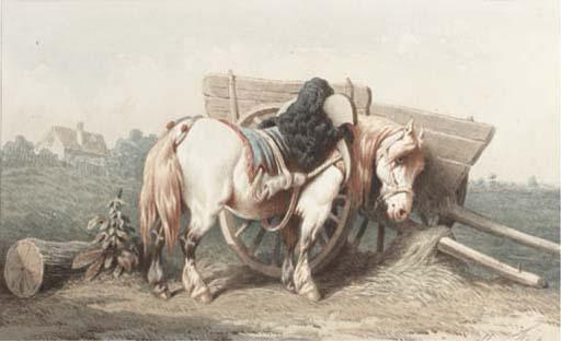 THEODORE FORT (NE EN 1810)