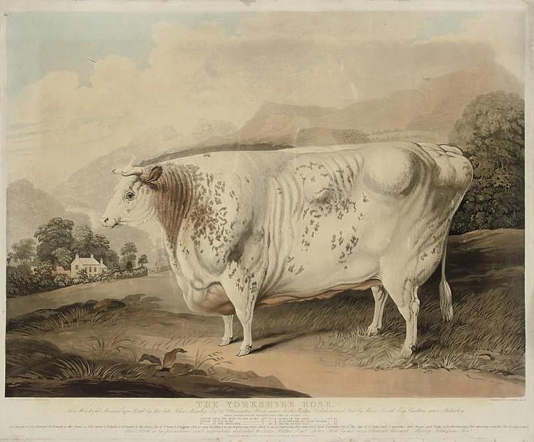 Charles Turner (1773-1857), after G. Horner