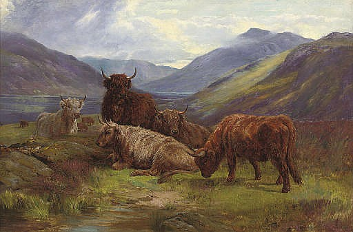 Highland cattle resting before a loch