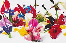 MARC QUINN (B. 1964)  - Winter Garden: two plates