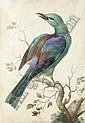 Herman Henstenburgh (Hoorn 1667-1726), Herman Henstenburgh, Click for value