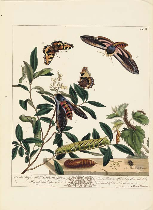 HARRIS, Moses (1731?-85?). <I>The Aurelian. A Natural History of English Insects... Fourth</I>