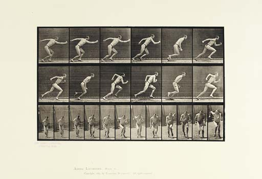 MUYBRIDGE, Eadweard (1830-1904). <I>Animal Locomotion. An Electro-Photographic Investigation of</I>