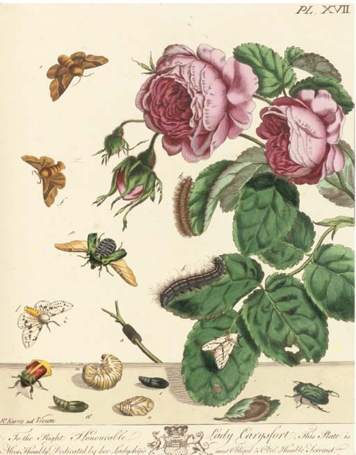 HARRIS, Moses (?1731-85). <I>The Aurelian. A Natural History of English Moths and</I>