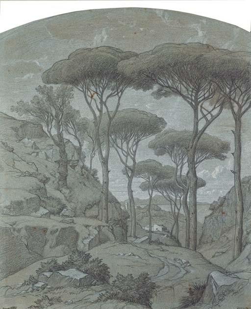 Des pins parasols près de Sorrente