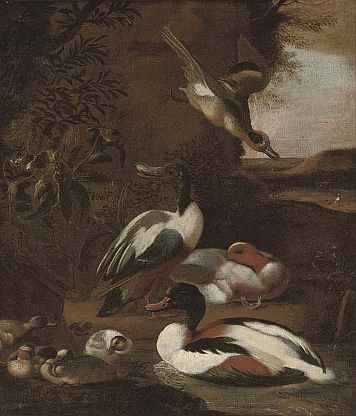 Ducks in a landscape
