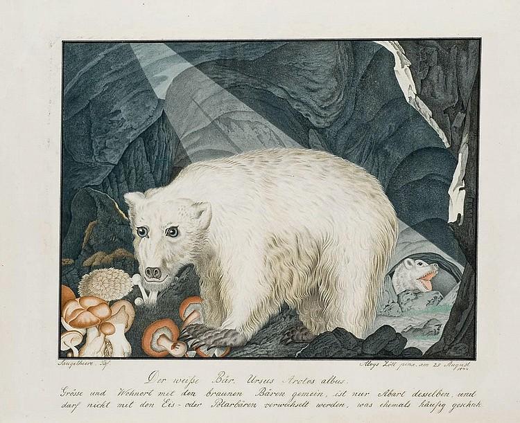 ALOYS ZÖTL (FREISTADT 1803-1897 EFERDING)