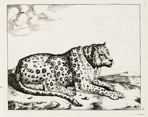 Lions, Bears, Wolves and Swine; Leopards; and The Set of the Bears (Holl. 33-48; 61-76)