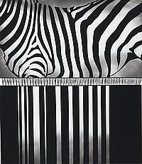 SUNIL GAWDE (B. 1960)