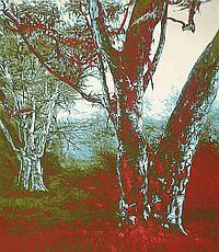 MASAKATSU KONDO (B. 1962)