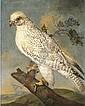 Philipp Ferdinand de Hamilton (Brussels 1664-1750 Vienna), Philipp Ferdinand de Hamilton, Click for value
