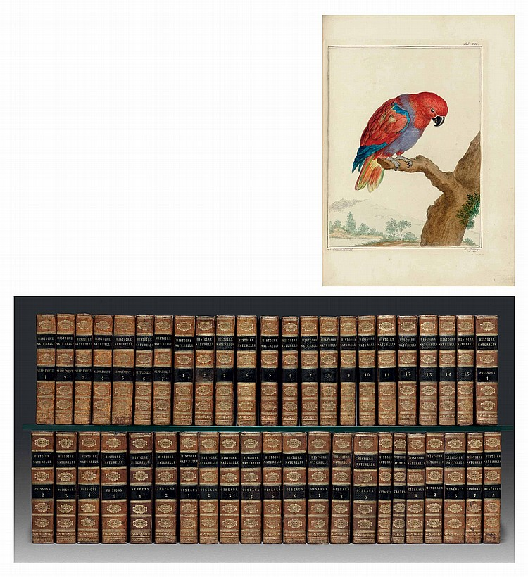BUFFON, Georges Louis Marie Leclerc, comte de (1707-1788).  Histoire naturelle générale et particuléire, avec la description du Cabinet du Roi . Paris: Imprimerie Royale, 1749-1804.