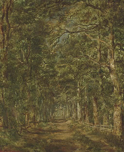 Chemin dans les bois au souliers