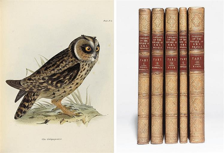DARWIN, Charles (1809-1882, editor). The Zoology of the Voyage of the Beagle, under the Command of Captain Robert FitzRoy, R.N., during the Years 1832 to 1836 . London: Smith, Elder, February 1838-October 1843. 5 parts in 5 volumes, 4° (308 x