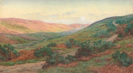 A colourful valley in summer
