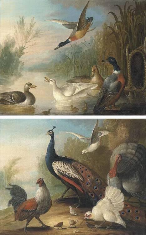 Marmaduke Cradock (c.1660-1716/17)