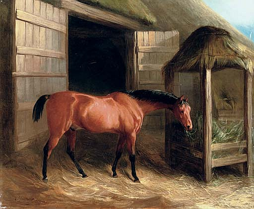 A hunter in a stable