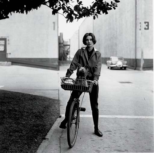 SID AVERY (1918-2002)