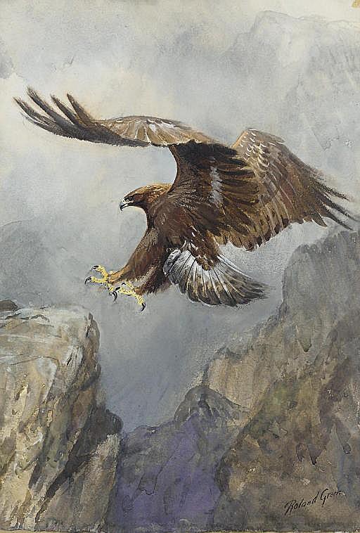 An Eagle Landing