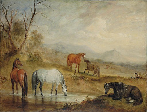 Horses at a Stream in an Extensive Mountainous Landscape
