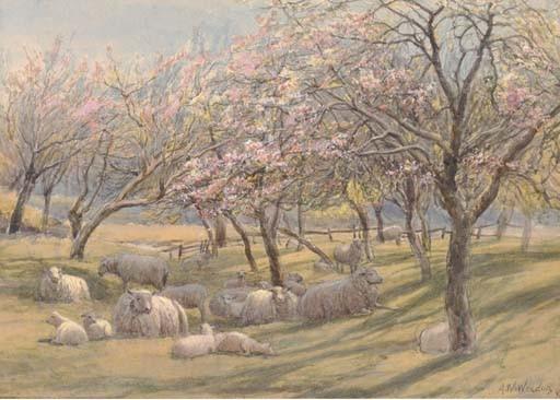 Augustus Walford Weedon (1838-1908)