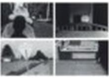 LEE FRIEDLANDER (B. 1934) - Fifteen Photographs, 1973