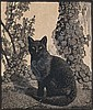 SIR LIONEL ARTHUR LINDSAY (1874-1961), Lionel Lindsay, Click for value