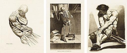 GAMELIN, Jacques (1738-1803).  Nouveau recueil d'ostologie et de myologie, dessin d'aprs nature ... pour l'utilit des sciences et des arts.  Toulouse: J.F. Desclassan, 1779.