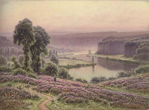 Brume du matin, Bruyères en fleurs