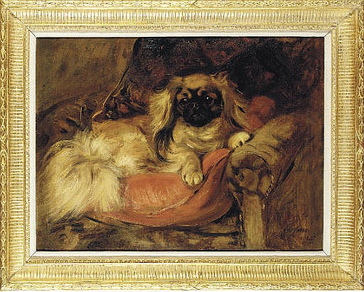 A Pekingese on a red cushion