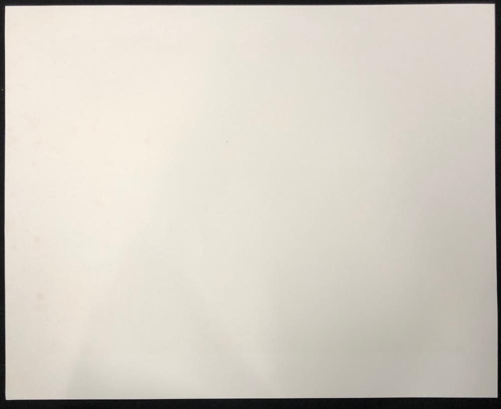 Kunstler Limited Edition Lithograph