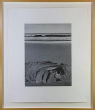 Print, David Ligare