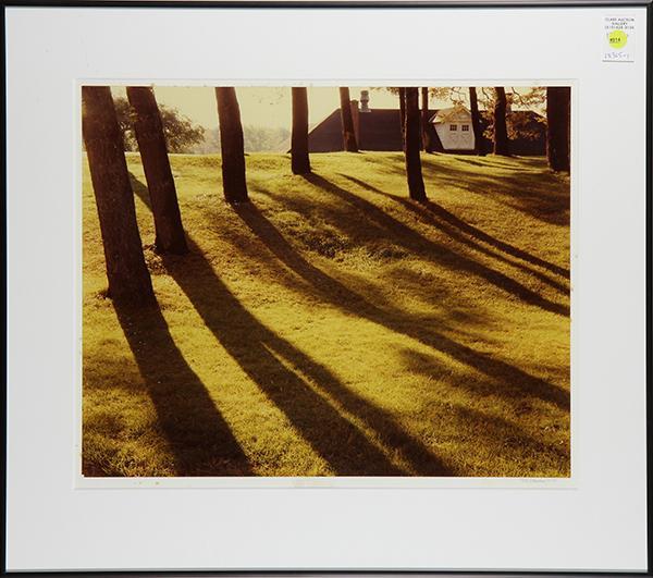 Lot 914: Photograph, Cole Weston