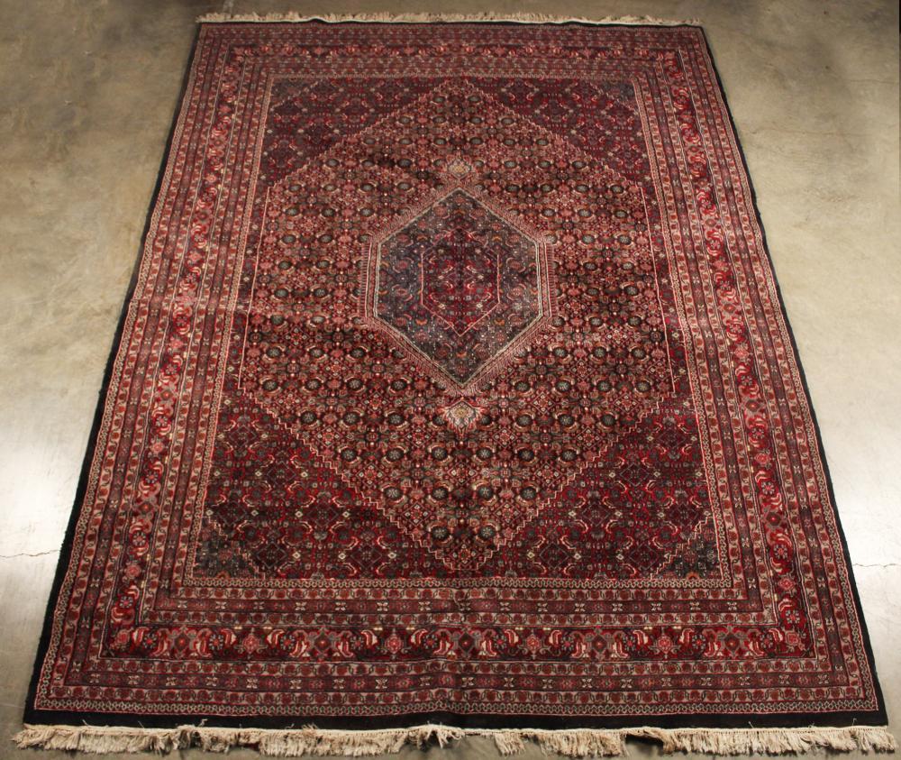 Oriental Rug 9 X 12 Indo Persian