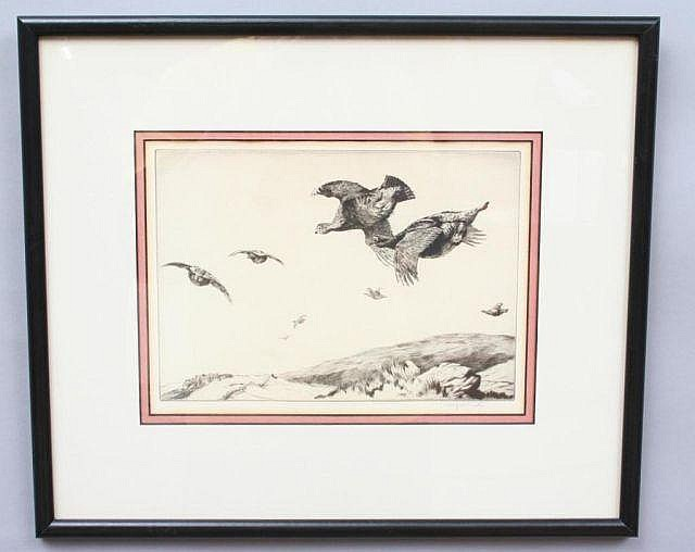Winifred Austin Game Bird or Sporting Etching