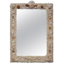 Custom Shell Mirror