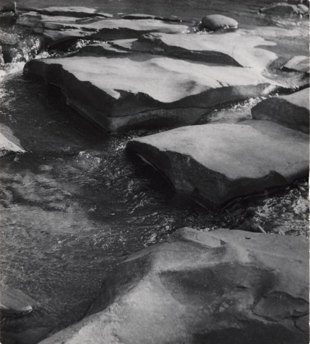 "SAM MAHL VINTAGE PHOTO""MILLSTREAM WOODSTOCK""1956"