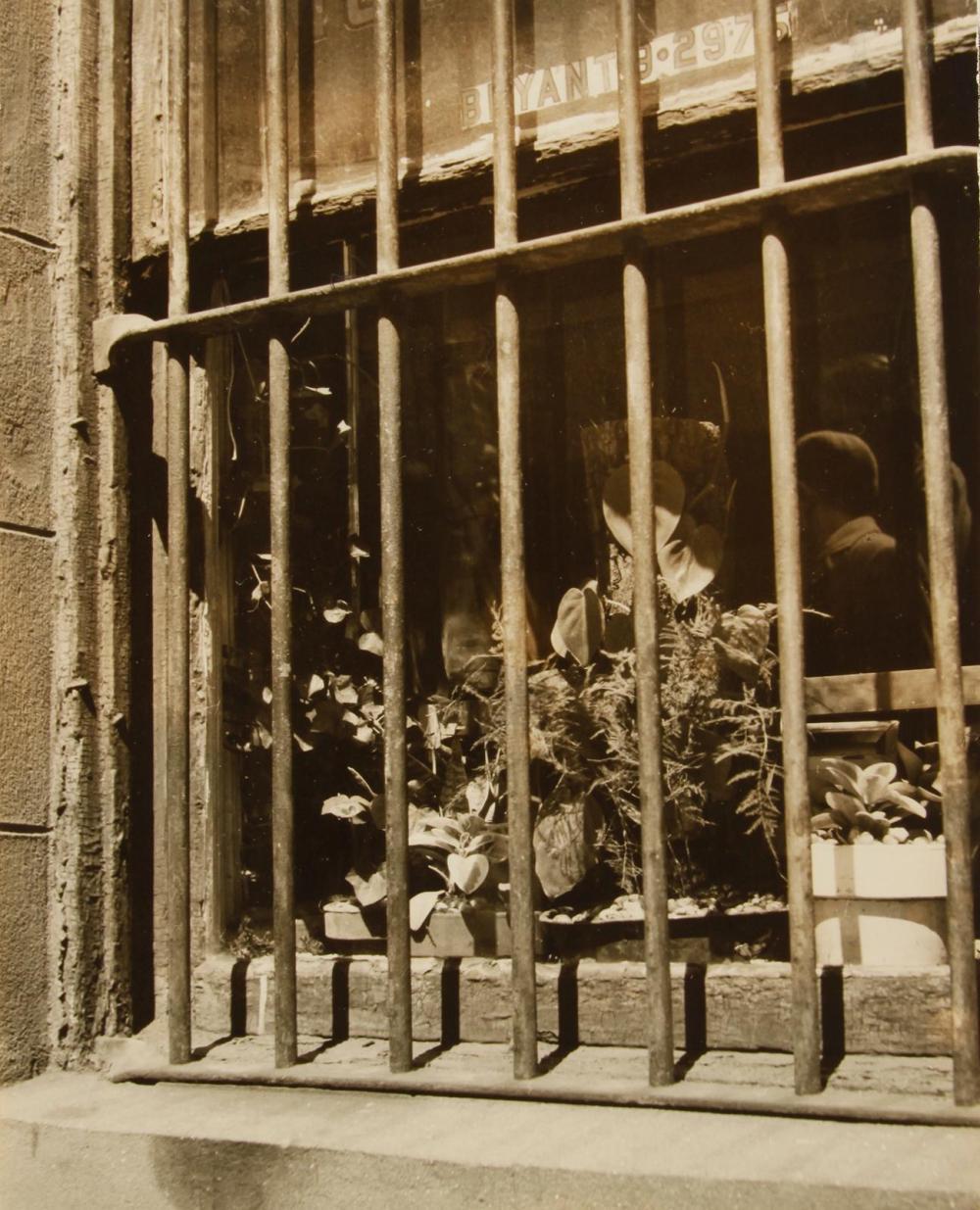 """SAM MAHL VINTAGE VINTAGE PHOTO """"WINDOW W/ BARS"""" 1959"""