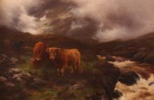 Peter Graham Highland Cattle Painting