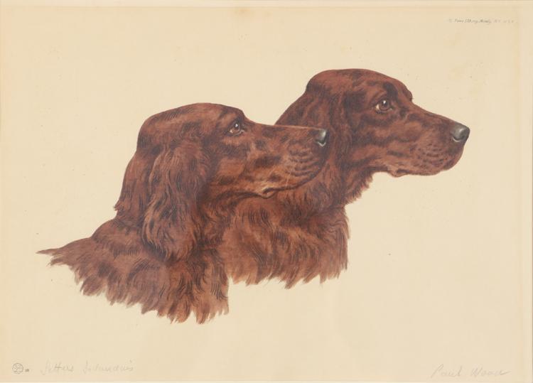 Paul Wood etching Irish Setters
