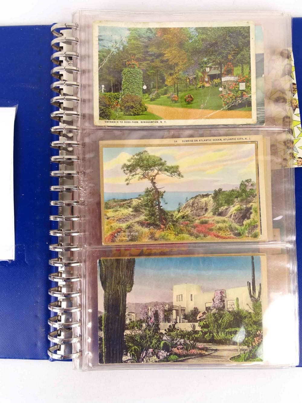 Album of Collectible Travel Postcards