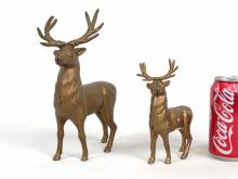 Two Elk Still Banks