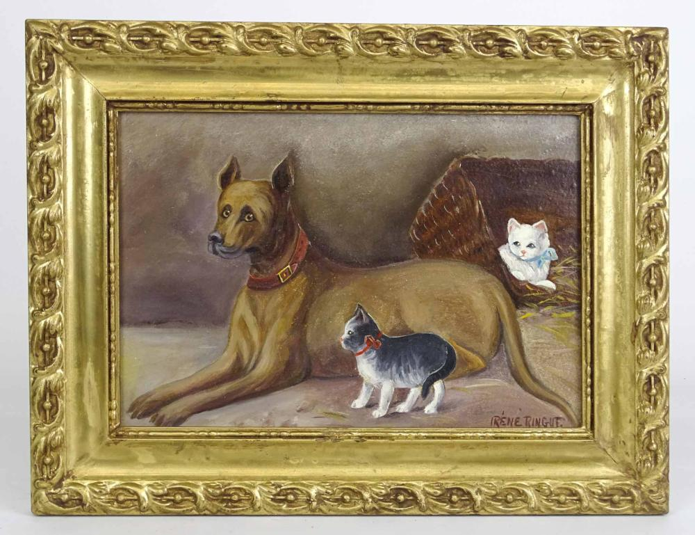 American School, Dog With Cats