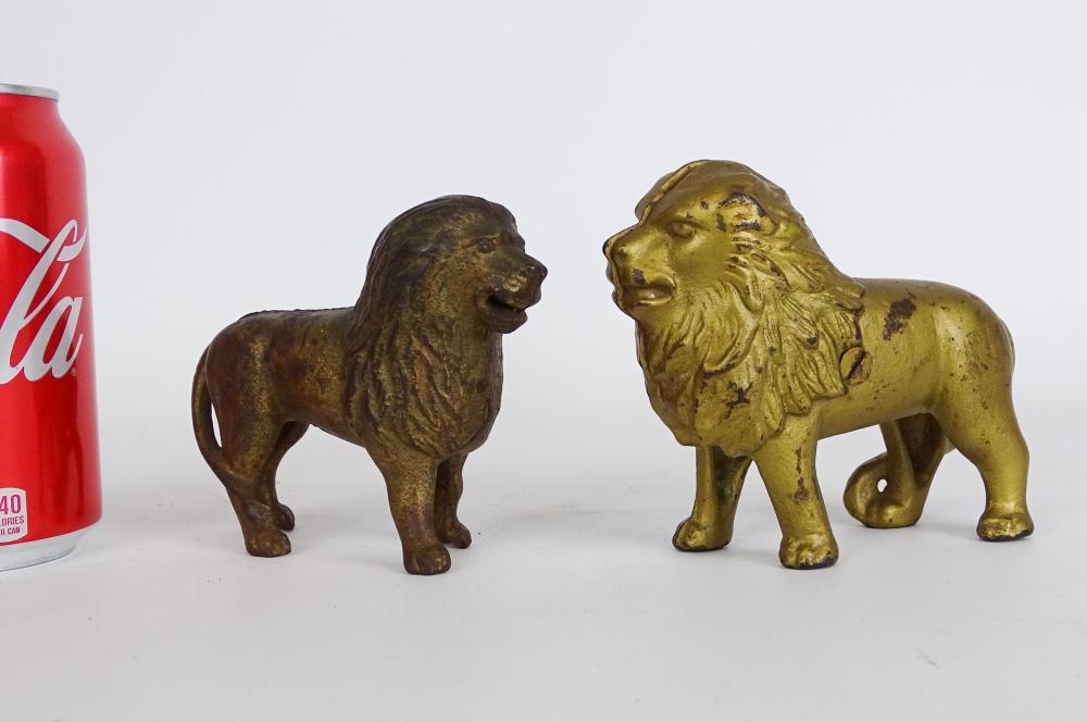 Lion Still Banks