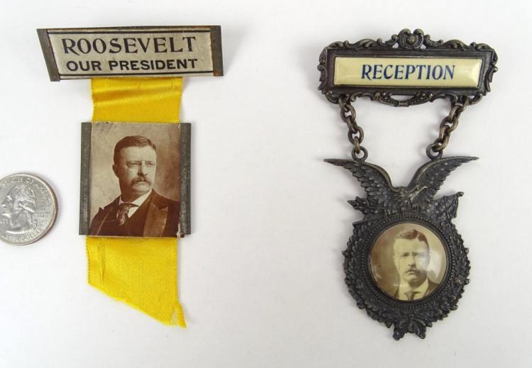 Teddy Roosevelt Campaign Badges