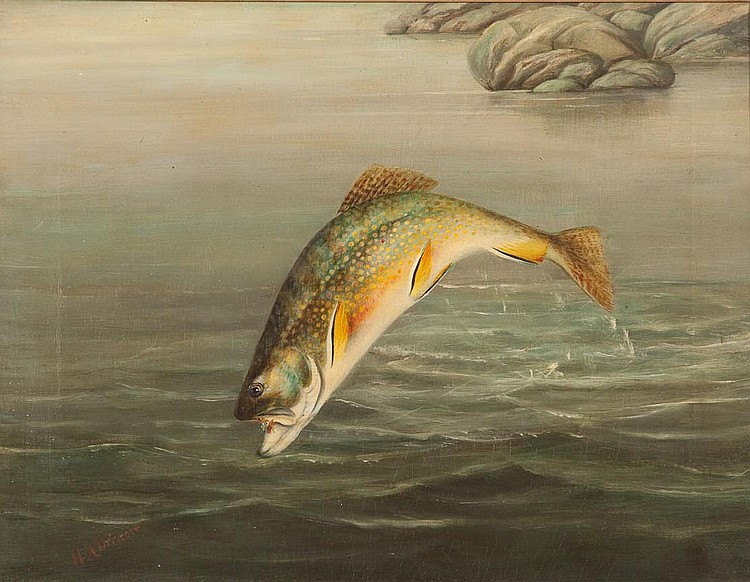 Harry A. Driscole (1861-1923) Brook Trout, Oil on canvas, 14 by 18 inches